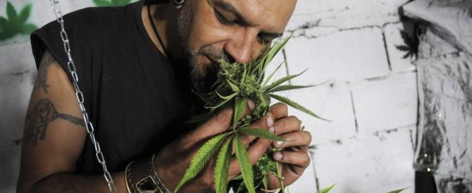 Con il 2014 negli Usa arrivano anche i primi coffee shop: Colorado e Washington legalizzano la marijuana