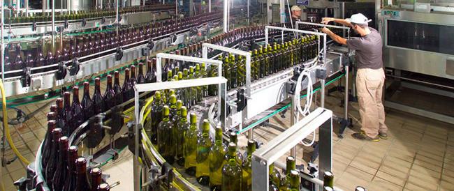 Innovazione e qualità: così l'export del vino cresce del 7% e traina il Made in Italy nel mondo