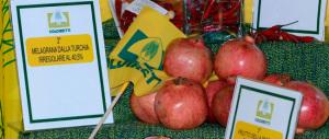 Allarme veleni della Coldiretti per il peperoncino vietnamita e il riso indiano. Ma che fine ha fatto il made in Italy?