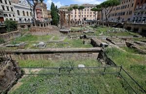 Erba alta e degrado negli scavi di Largo di Torre Argentina a Roma