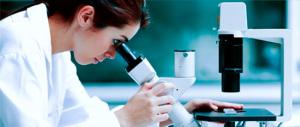Farmaci a bersaglio molecolare, un'arma efficace contro i tumori del sangue. Una ricerca dell'Istituto Italiano Tumori