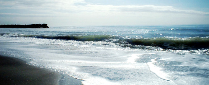 L'Apocalisse viene dal mare: oceani ormai infetti. Ecco cosa rischiamo