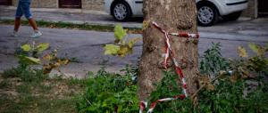 Ragazzo ucciso, non si placa la rabbia. Il parroco: «Il nostro quartiere è abbandonato dalle istituzioni»