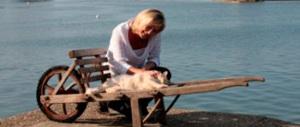 Non c'è pace in casa Le Pen. Un doberman del padre ha sbranato la gattina di Marine… e lei se ne va di casa