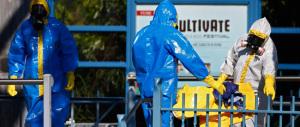 """Ebola, nuovi falsi allarmi. La Ue decide di creare la figura di un """"coordinatore unico"""" per l'emergenza"""