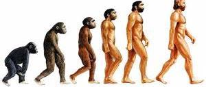Sul Big Bang papa Francesco si riconcilia anche con gli evoluzionisti…