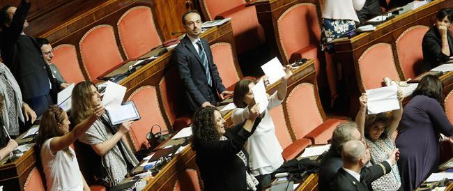 Jobs Act, bagarre al Senato dei grillini. Urla e monetine contro Poletti. Grasso espelle Petrocelli
