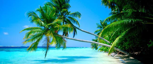 """Alle Hawaii bocciata l'Obama Beach. E ora in Italia non s'inventino… la """"spiaggia di Renzi"""""""