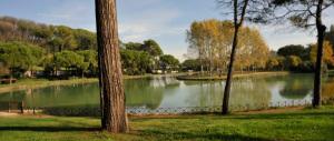 10 euro al mese per abitare a Villa Ada: la mappa dell'abusivismo a Roma