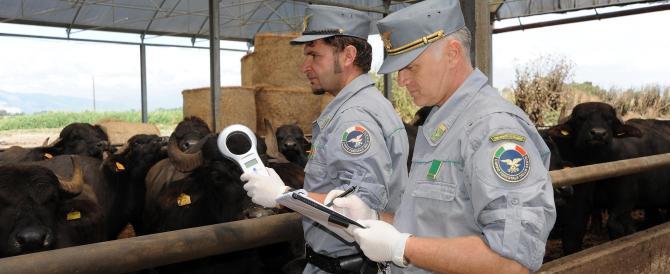 Il piano di Renzi: accorpare le forze dell'ordine per lanciare Eurogendfor
