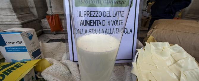 Sos allevatori: chiusa una stalla su cinque. A rischio il latte Made in Italy