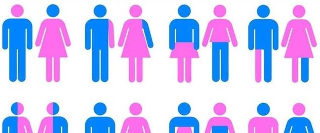ideologia gender