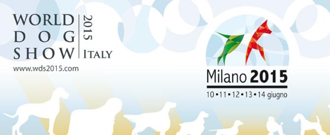 Il migliore amico dell'uomo in mostra a Milano, torna il World Dog Show