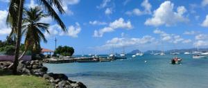 Martinica, così la 'ndrangheta fa affari scambiando coca e hashish