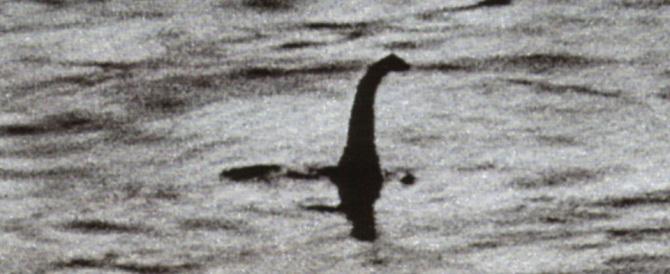 Loch Ness, si arrende anche l'ultimo irriducibile: nel lago? Solo pesci gatto