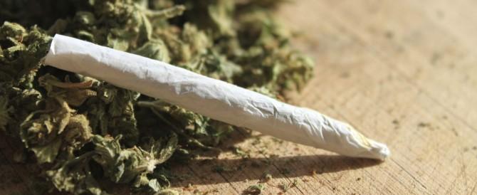 Droga: tre giovani gravi per l'Amnèsia, ultima frontiera della marijuana