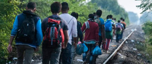 Alta tensione in Ungheria, profughi in massa e scontri: l'esercito in campo