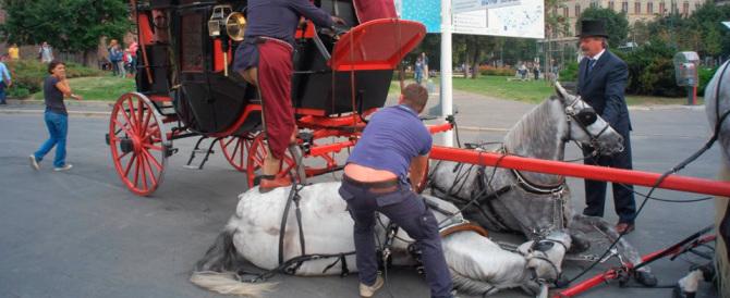 Milano, una carrozza trainata da 5 cavalli travolge 2 pedoni: uno è grave