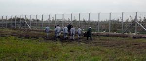 Muro anti-migranti, Orban non si ferma: anche i detenuti al lavoro