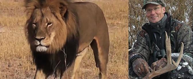 Uccise il leone Cecil: aveva la licenza in regola, non sarà processato