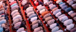 """Sfregio a Bologna, il Pd """"regala"""" agli islamici l'area per la moschea. Ira Bignami (video)"""