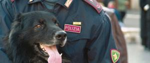 Roma: arrestati, grazie al cane Alek, sette spacciatori extracomunitari