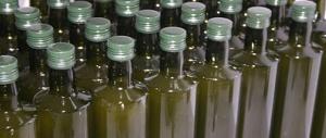 Sos olio italiano, l'allarme di Coldiretti: siamo invasi dalle produzioni tunisine