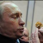 Si sprecano le immagini celebrative di Putin; l'ex agente è molto attento a gestire la sua immagine nel mondo.  (Foto Twitter)
