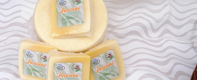 "È il Pecorino la star del ""Made in Italy"" all'estero: parola di Coldiretti"