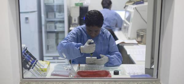 Il virus Zika è arrivato in Italia dall'America Latina. L'allarme dell'Oms