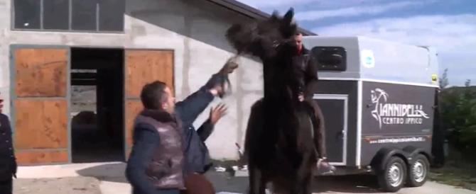 Giornalista Rai disarcionato da cavallo durante un servizio (VIDEO)