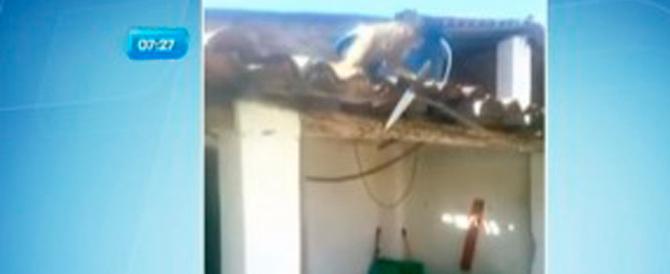 Brasile, macaco ubriaco con machete in mano terrorizza i clienti di un bar (video)