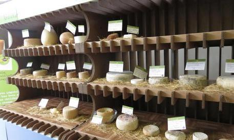 Ingerisce formaggio contaminato di origine romena: grave un bimbo