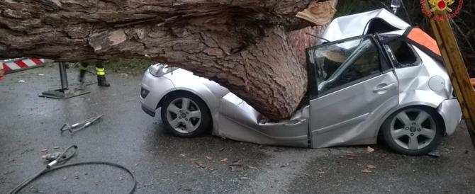 Roma, maltempo: albero cade e provoca due morti e un ferito grave