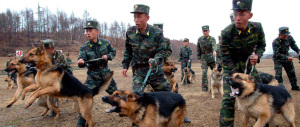 Corea del Nord, fuga di gruppo dal comunismo: in 13 disertano al Sud