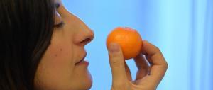 Contrordine salutisti: adesso mangiare (troppo) sano fa ammalare