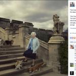 La regina pubblica molti scatti su Facebook, come questo, dove è ritratta coi suoi cani. Eccoli, ciascuno col suo nome indicato.  (Foto Facebook, The British Monarchy)