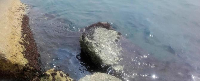 Cede una diga di contenimento per il greggio: è emergenza a Genova