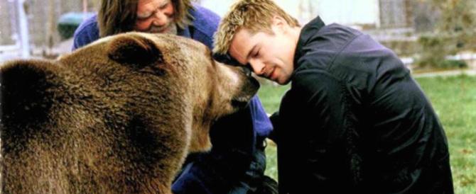 Yellowstone, ora i ranger danno la caccia al killer dell'orso Scarface