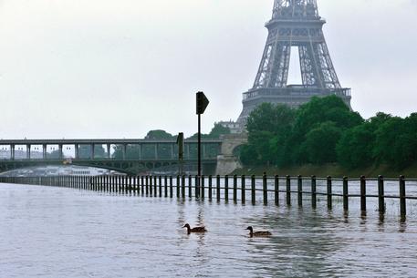 Maltempo a Parigi,  allarme inondazioni. Il Louvre chiude per evacuare le opere
