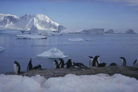 """Antartide: il buco dell'ozono si restringe ma è """"sorvegliato speciale"""""""