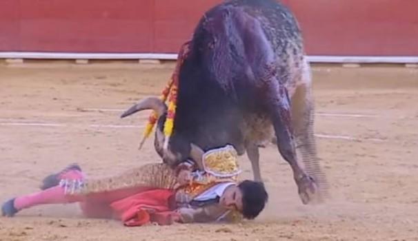 Sangue e arena a Valencia, giovane torero incornato e ucciso