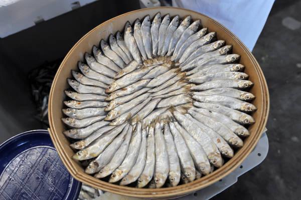 Acciughe, naselli e triglie i pesci preferiti dagli italiani in estate