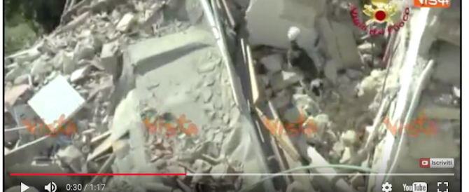 Pescara del Tronto, le immagini di un cane che cerca tra le macerie (video)