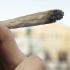 Cannabis, ecco tutte le menzogne diffuse da chi vuole legalizzarla