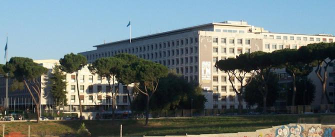 Allarme bomba nella sede della Fao a Roma, si è trattato di un falso allarme