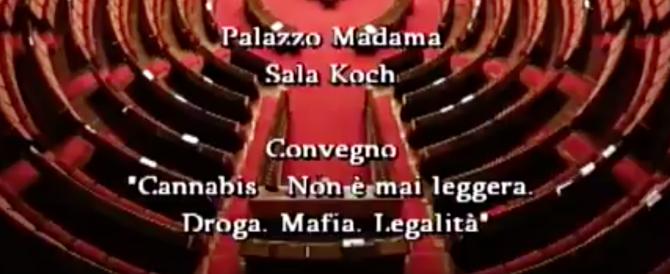 """""""Cannabis. Non è mai leggera. Droga, mafia, legalità"""" (Convegno in diretta streaming)"""