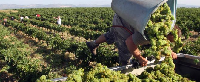 La Brexit s'è bevuta il vino italiano, crolla l'export del Made in Italy