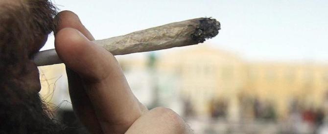 Stop alla legge sulla cannabis: schiaffo al fronte che vuole la legalizzazione