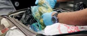 Bimba peruviana viaggia con due chili di cocaina: fermata a Malpensa